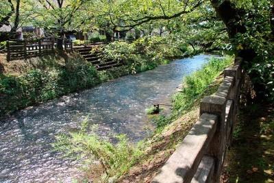 松川の上流の美しい景色