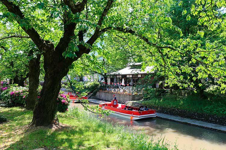 富山観光遊覧船(松川遊覧船)新緑の乗り場「松川茶屋」