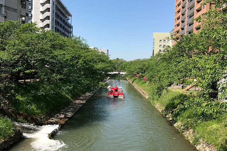 桜橋から見る松川べり