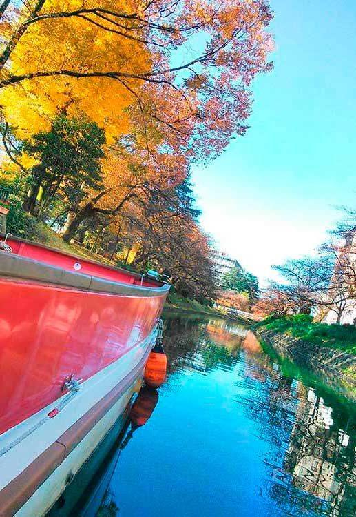 Matsukawa in the autumn leaves