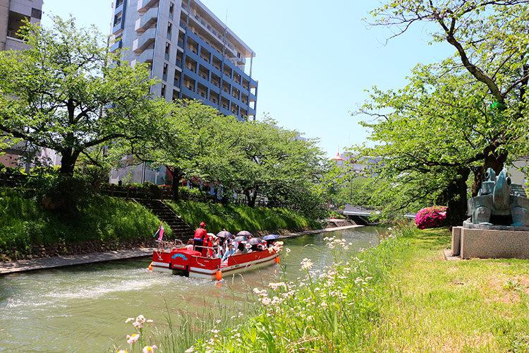 松川べりのマンションのそばを通る松川遊覧船