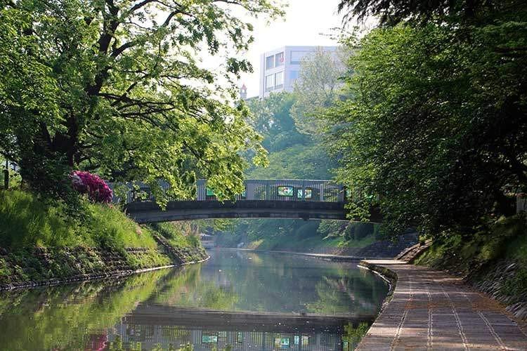 早朝の松川べり(七十二峰橋)